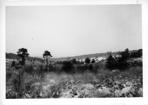 Ashdown forest in winter photographed and printing using traditional photographic techniques